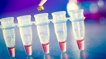 Bioestimulación home
